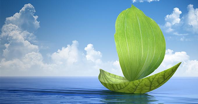 Leaf boat sailing in the ocean