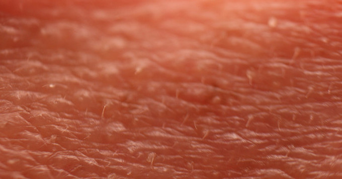 Close up image of human skin
