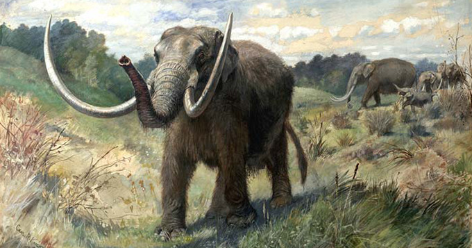 Illustration: Charles R. Knight, AMNH, Wikimedia