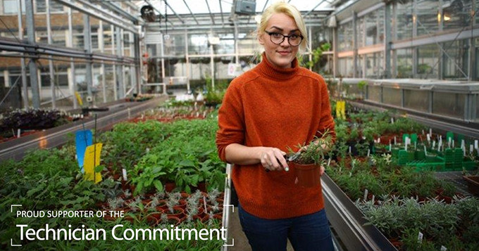 Horticulture technician standing in a greenhouse