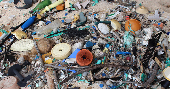 Garbage on East Beach, Henderson Island. Credit: Jennifer Laver
