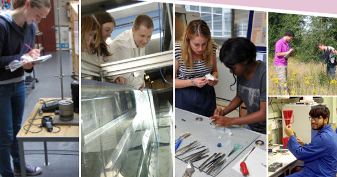 Students undertaking various activities at their placement
